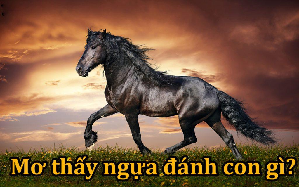nằm mơ thấy ngựa đánh con gì