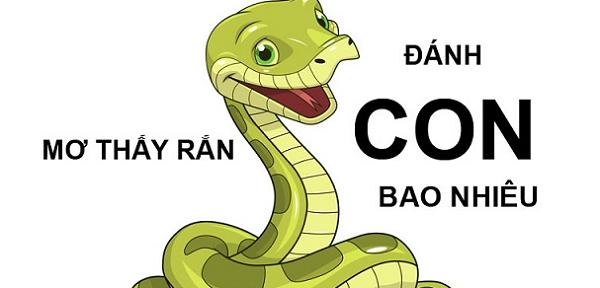 Con rắn số mấy