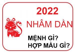 Năm 2022 mệnh gì
